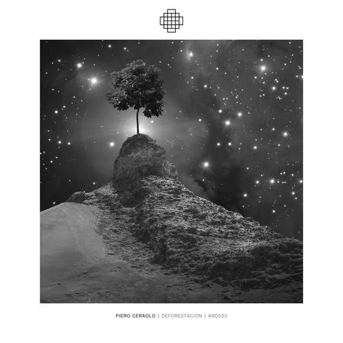 Piero Ceraolo - Deforestacion - ARD020